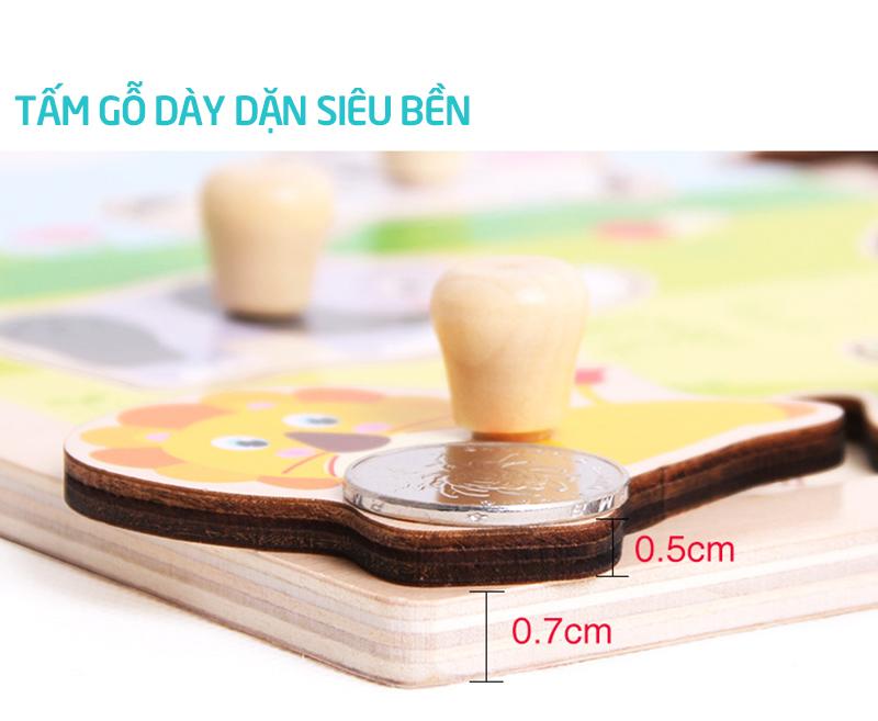 Bảng gỗ có núm cao cấp đóng đinh - tongkhothienan.com